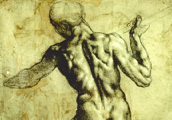 Lichaam - Michelangelo